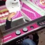 <クレーンゲーム>男児上半身入れ景品ゲット ネットに動画