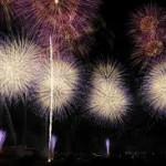 【土浦全国花火競技大会】夜空を彩る2万発に75万人が酔いしれる